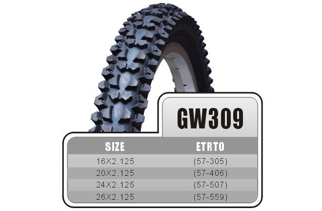 GW309